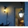Kép 2/4 - Lutec UNITE kültéri fali lámpa 9W függő