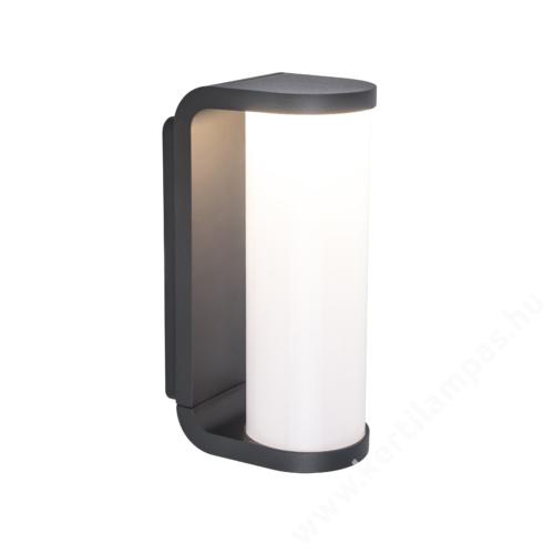 Lutec Adalyn kültéri fali lámpa 10 w LED